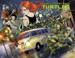 Picture of Teenage Mutant Ninja Turtles Heroes Collection HC