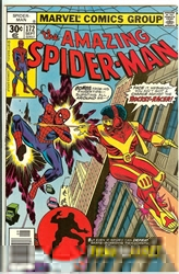 Picture of Amazing Spider-Man #172