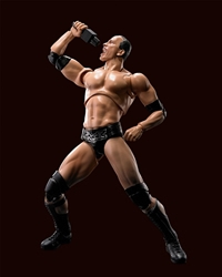 Picture of Rock WWE s.h.Figuarts Figure