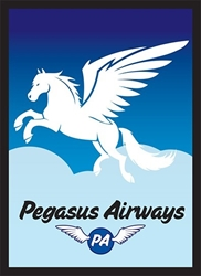 Picture of Pegasus Air Card Sleeve 50-Count Pack