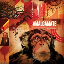 Picture of Amalgamate HC Art, Design & Exploration of Blaine Fontana