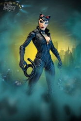 Picture of Catwoman Arkham City Action Figure