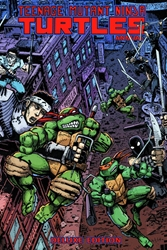 Picture of Teenage Mutant Ninja Turtles Annual Deluxe HC