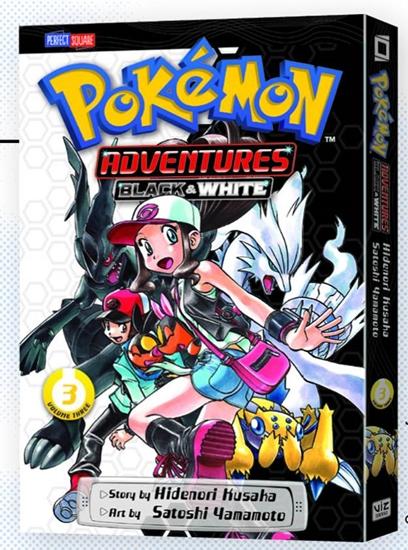 pokemonadventureblackwhit