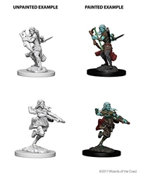 Picture of Dungeons and Dragons Nolzur's Marvelous Unpainted Earth Genasi Female Rogue Miniatures