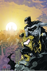 Picture of Batman and the Signal SC
