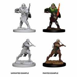 Picture of Dungeons and Dragons Nolzur's Marvelous Unpainted Elf Male Fighter Miniatures