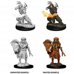 Picture of Dungeons and Dragons Nolzur's Marvelous Unpainted Human Male Druid Miniatures