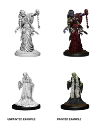 Picture of Dungeons and Dragons Nolzur's Marvelous Green Hag and Night Hag Unpainted Miniatures