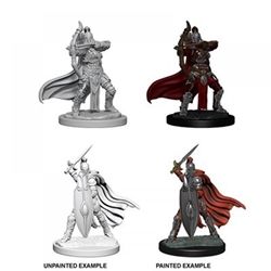 Picture of Dungeons and Dragons Nolzur's Marvelous Unpainted Female Knights/Gray Maidens Miniatures