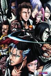 """Picture of Bleach Ichigo vs Espadalcon 24"""" x 36"""" Poster"""