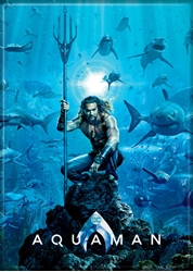 Picture of Aquaman Poster Magnet