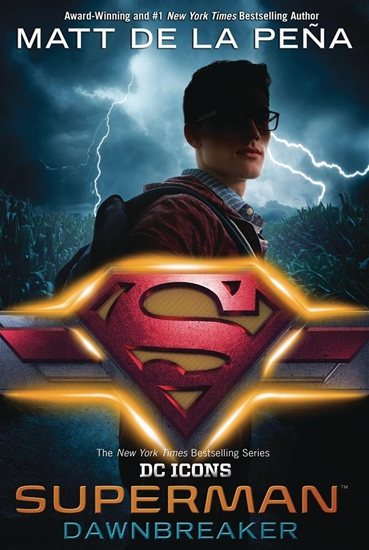 supermandawnbreakerhcnovel