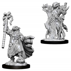 Picture of Dungeons and Dragons Nolzur's Marvelous Unpainted Dragonborn Female Sorcerer Miniatures