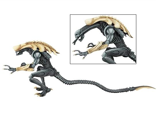 alienvspredatorchrysalisal