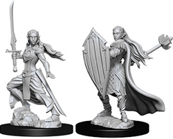 Picture of Dungeons and Dragons Nolzur's Marvelous Miniatures Female Elf Paladin