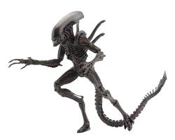 "Picture of Aliens Resurrection Xenomorph Warrior 7"" Action Figure"