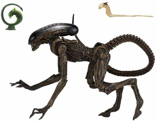 alien3dogalienultimate40t