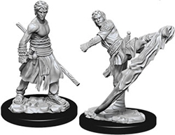 Picture of Dungeons and Dragons Nolzur's Marvelous Miniatures Male Half-Elf Monk
