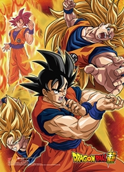 Picture of Dragon Ball Super Battle of the Gods Goku Wall Scroll