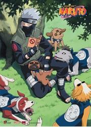 Picture of Naruto Kakashi Reading Wall Scroll