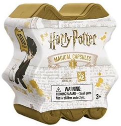 Picture of Harry Potter Magical Capsules Blind Box Figures