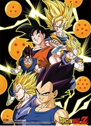 Picture of Dragon Ball Z Goku and Vegeta Wall Scroll
