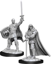 Picture of Dungeons and Dragons Nolzur's Marvellous Unpainted Human Male Paladin Miniatures