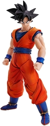 Picture of Dragon Ball Z Goku Imagination Works Action Figure