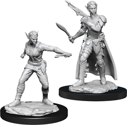 Picture of Dungeons and Dragons Nolzur's Marvelous Shifter Female Rogue Miniatures