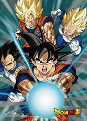 Picture of Dragon Ball Super Battle of the Gods Group 5 Wall Scroll