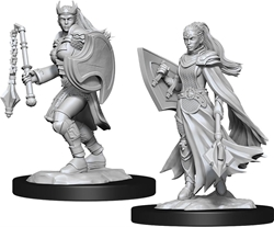 Picture of Dungeons and Dragons Nolzur's Marvellous Unpainted Kalashtar Female Cleric Miniatures