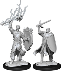 Picture of Dungeons and Dragons Nolzur's Marvellous Unpainted Half-Elf Male Paladin Miniatures