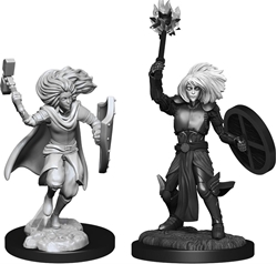 Picture of Dungeons and Dragons Nolzur's Marvellous Unpainted Changeling Male Cleric Miniatures