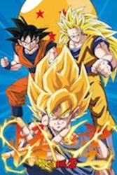 Picture of Dragon Ball Z Goku Evolution Poster