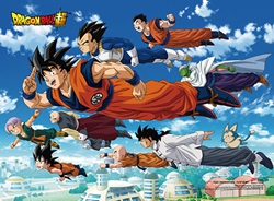 Picture of Dragon Ball Super Universal Survival Wall Scroll