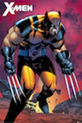 Picture of X-Men Wolverine Ranger Poster