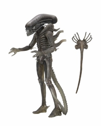 """Picture of Alien Giger 40th Anniversary 7"""" Action Figure"""